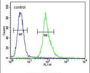 AKT1 Antibody (PA5-23780) in Flow Cytometry