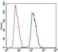 ALDH2 Antibody (MA5-17029) in Flow Cytometry