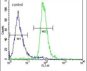 ALOX12B Antibody (PA5-23608) in Flow Cytometry