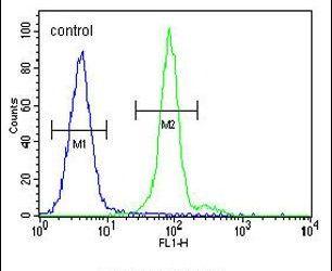 ALX4 Antibody (PA5-23890) in Flow Cytometry