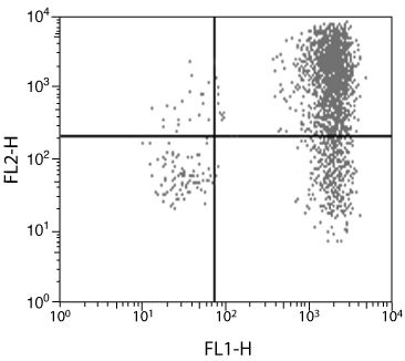 IL-6 Antibody (AMC0864) in Flow Cytometry