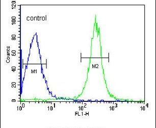 ANGPTL4 Antibody (PA5-26216) in Flow Cytometry
