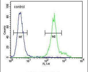 ANKFY1 Antibody (PA5-24640) in Flow Cytometry