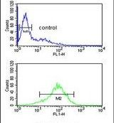 ANR49 Antibody (PA5-24888) in Flow Cytometry