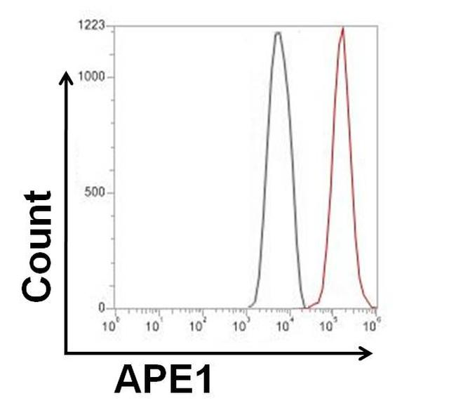 APE1 Antibody (MA1-440) in Flow Cytometry
