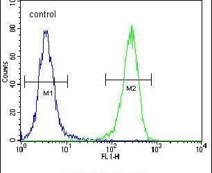 Aquaporin 11 Antibody (PA5-25704) in Flow Cytometry