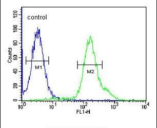 ARMC5 Antibody (PA5-25316) in Flow Cytometry