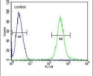 ATP8B2 Antibody (PA5-24267) in Flow Cytometry