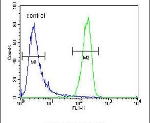 ATP8A2 Antibody (PA5-24417) in Flow Cytometry