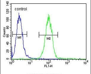 Annexin A1 Antibody (PA5-13530) in Flow Cytometry