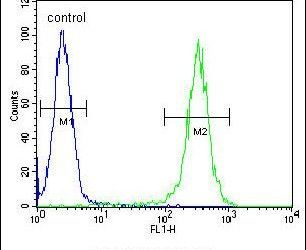 B4GALT5 Antibody (PA5-25282) in Flow Cytometry