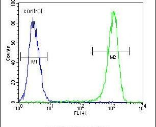 Bcl-10 Antibody (PA5-24191) in Flow Cytometry