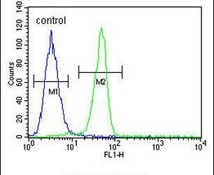 Biglycan Antibody (PA5-13700) in Flow Cytometry