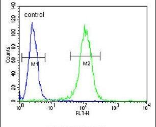BHLH3 Antibody (PA5-25651) in Flow Cytometry