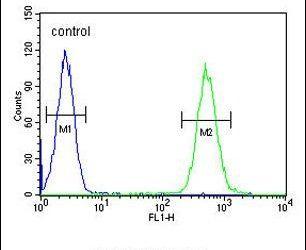 BTNL3 Antibody (PA5-24387) in Flow Cytometry