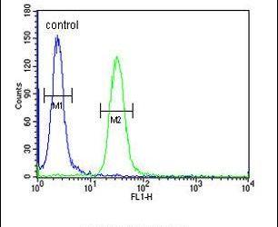 Bub1 Antibody (PA5-25353) in Flow Cytometry