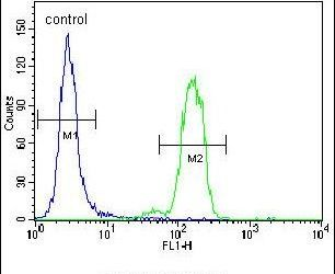 BAD Antibody (PA5-11403) in Flow Cytometry