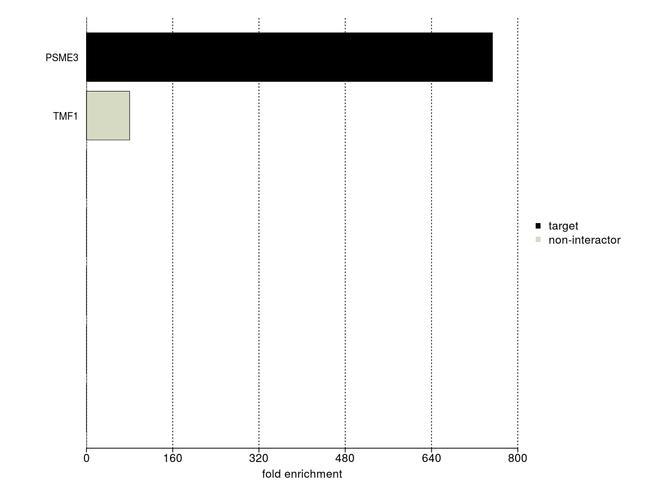 PSME3 Antibody (700180) in IP-MS