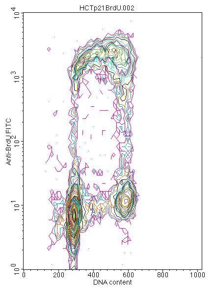 BrdU Antibody (OMA1-06200) in Flow Cytometry