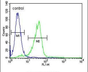 C11orf74 Antibody (PA5-24078) in Flow Cytometry