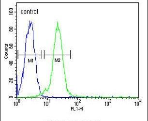 C13orf18 Antibody (PA5-25786) in Flow Cytometry