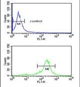C19orf26 Antibody (PA5-26282) in Flow Cytometry