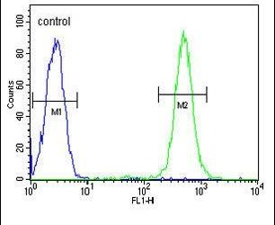 C19orf63 Antibody (PA5-25112) in Flow Cytometry