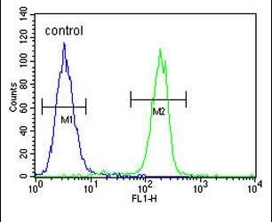 CTRP1 Antibody (PA5-13558) in Flow Cytometry