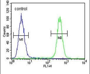 C6orf170 Antibody (PA5-26035) in Flow Cytometry