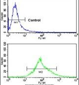 Carbonic Anhydrase XIV Antibody (PA5-14190) in Flow Cytometry