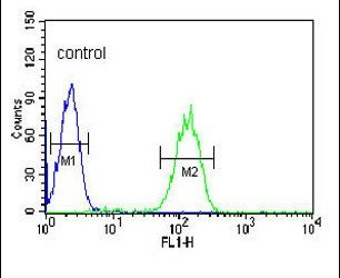 Carbonic Anhydrase VB Antibody (PA5-25944) in Flow Cytometry