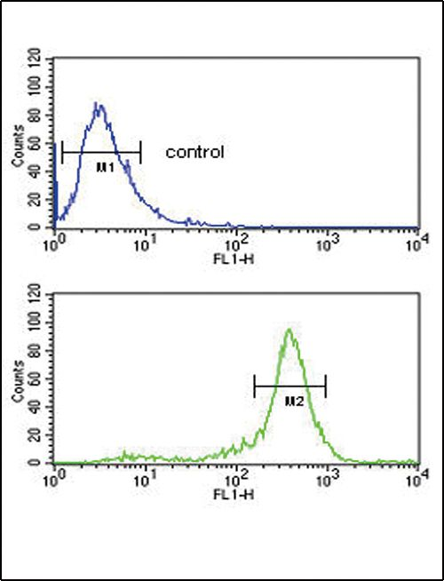 Calreticulin Antibody (PA5-25922) in Flow Cytometry