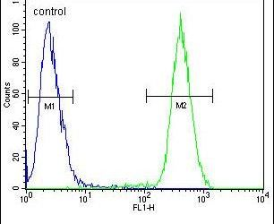 CAMLG Antibody (PA5-25779) in Flow Cytometry