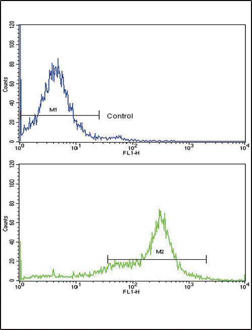 Caveolin 3 Antibody (PA5-13443) in Flow Cytometry