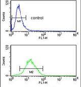 CCNB1IP1 Antibody (PA5-26407) in Flow Cytometry