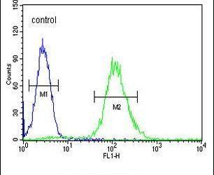 Cyclin G1 Antibody (PA5-24422) in Flow Cytometry