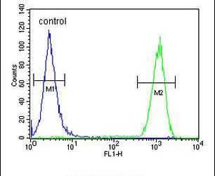 Cyclin T1 Antibody (PA5-24163) in Flow Cytometry