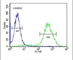 CCR1 Antibody (PA5-24785) in Flow Cytometry