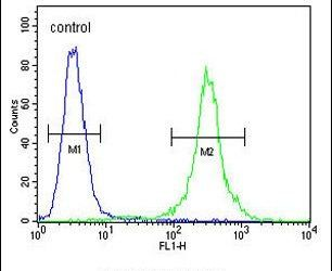 CCR8 Antibody (PA5-23987) in Flow Cytometry