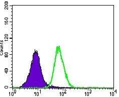 CD104 Antibody (MA5-17104) in Flow Cytometry