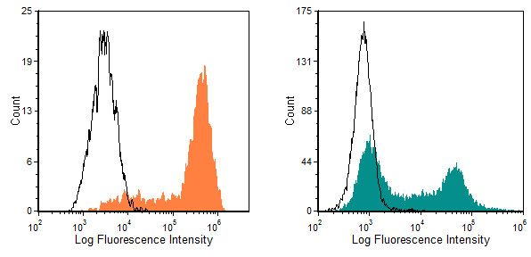 CD11b Antibody (MA5-17860) in Flow Cytometry