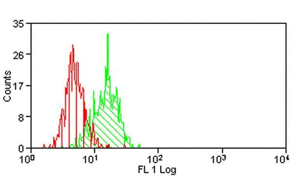 B7-H3 Antibody (MA1-74441) in Flow Cytometry