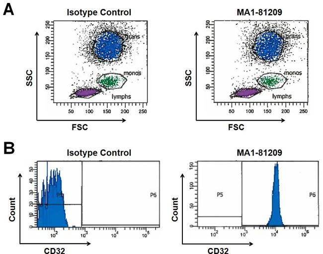 CD32 Antibody (MA1-81209) in Flow Cytometry