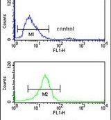 CD49f Antibody (PA5-26262) in Flow Cytometry