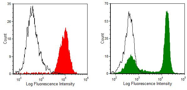 CD4 Antibody (MA5-17393) in Flow Cytometry