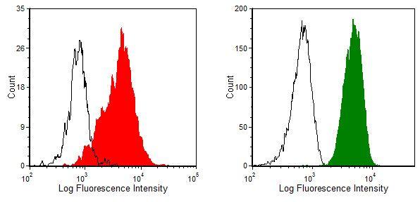 CD59 Antibody (MA1-70058)