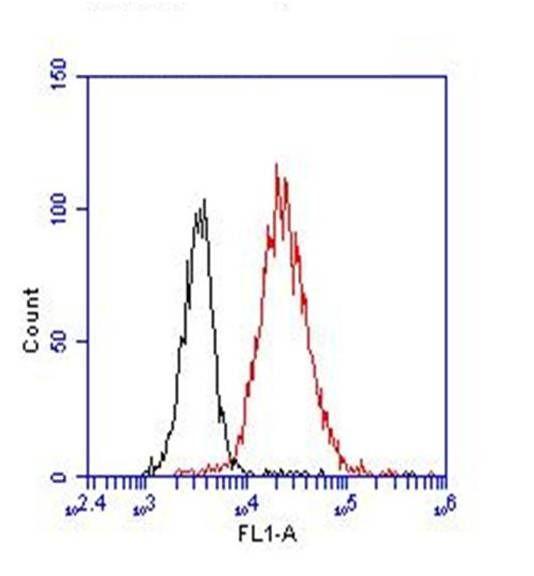 CD8 Antibody (MA1-145) in Flow Cytometry