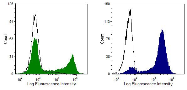 CD8 Antibody (MA1-70003) in Flow Cytometry