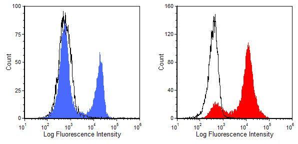 CD8 Antibody (MA1-70041) in Flow Cytometry