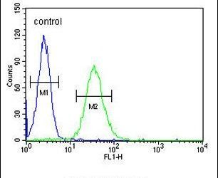 CD80 Antibody (PA5-24941) in Flow Cytometry